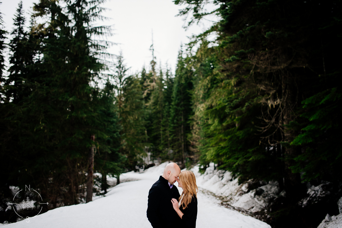 forest snowy engagement