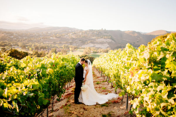 Carmel Valley Wedding- Amy and Chris' Vineyard Wedding at Carmel Valley Ranch:  Sneak Peek