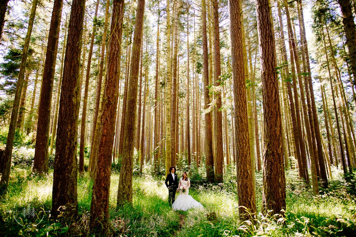 Forest Wedding Washington