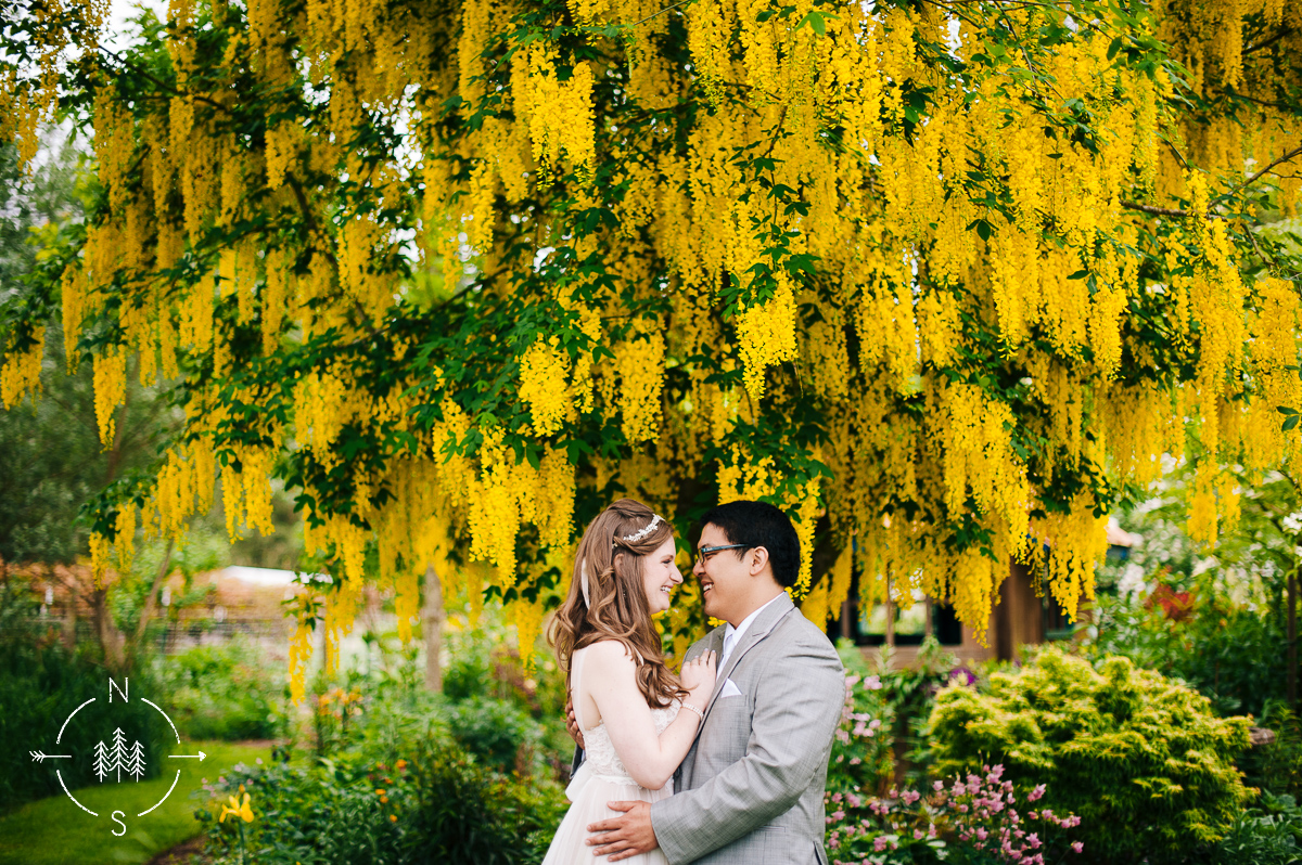 Portrait of a bride and groom on their wedding day, underneath a bright yellow tree.