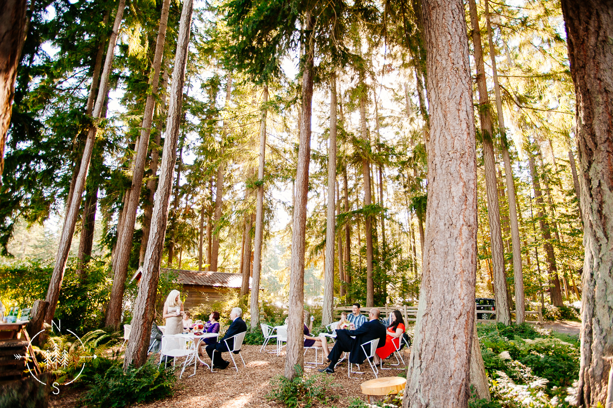 Wedding guests sit in the forest for cocktail hour at Fireseed Catering on Whidbey Island.